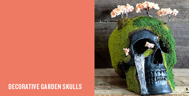 Bonsai Skulls | Jack of the Dust