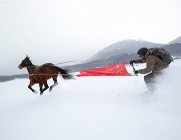 Come and See: Skijoring | Canon