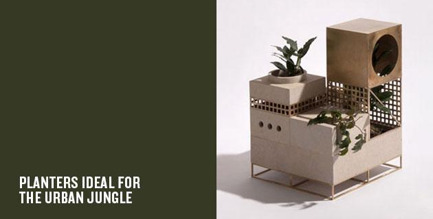 Plantscape | Maxim Scherbakov