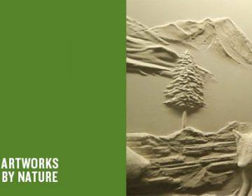 Creative Drywall | Bernie Mitchell