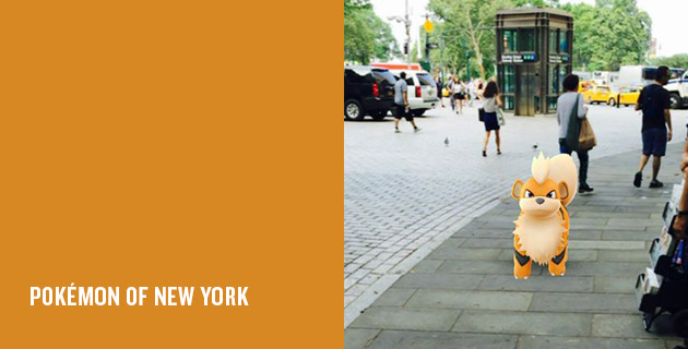 Pokemon Of New York