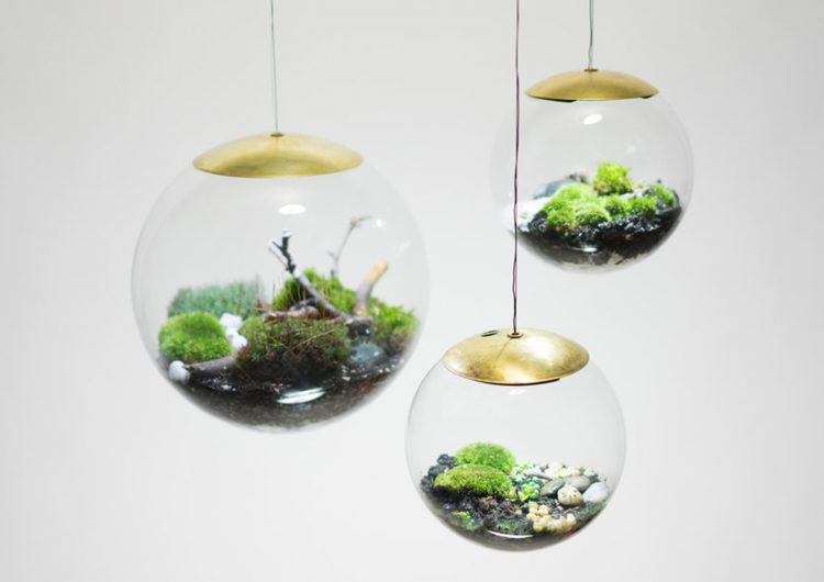Aerial Terrarium made in Brooklyn