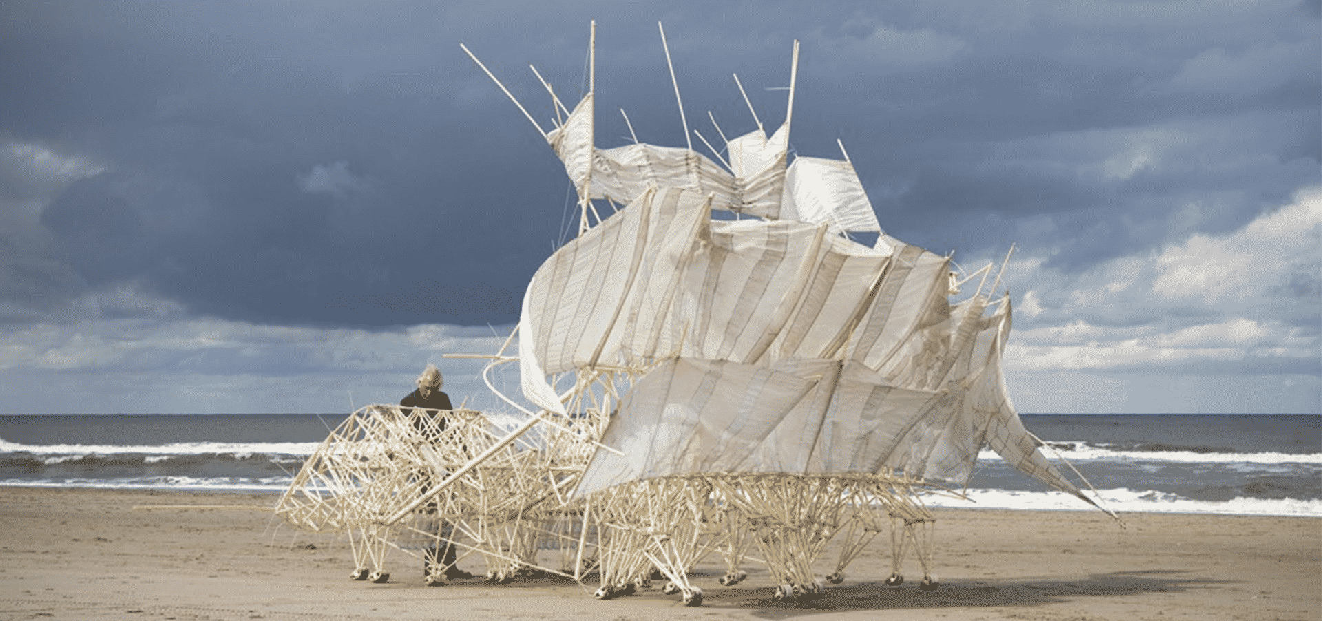 Walking Strandbeests By Theo Jansen