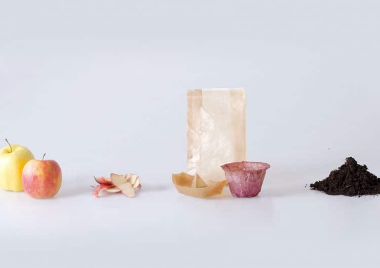 Eco-friendly food packaging from fermented bacteria and yeast