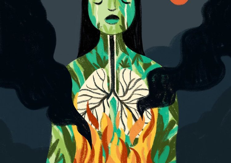 Amazon Rainforest Fire: How Artists Answer